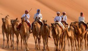Wild-Arabia-1.-Sand-Wind-and-Stars